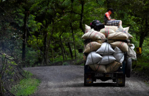 2021 Coffee Crisis in Colombia